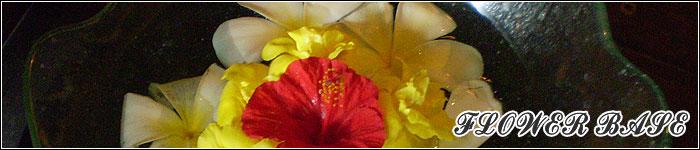 バリリゾートなフラワーベース、花瓶、鉢など