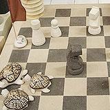 チェスに亀??
